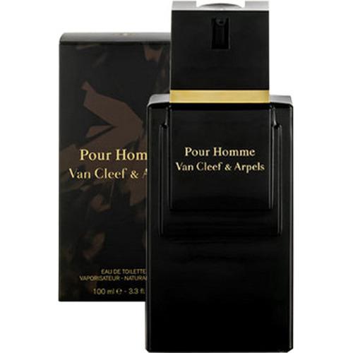 Van Cleef & Arpels Pour Homme eau de toilette 100 ml spray